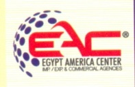 Egypt/ America logo - 43 x 200